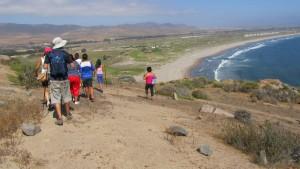 En Punta Teatinos y El Panul enseñaron sobre biodiversidad en zonas costeras